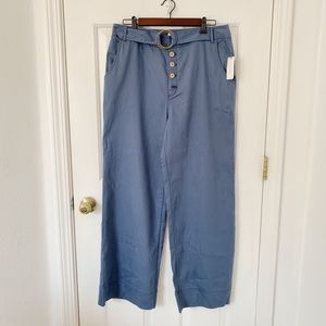 NWT Anthropology Pants Sz 14 Blue